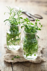 fresh thyme and rosemary in glass