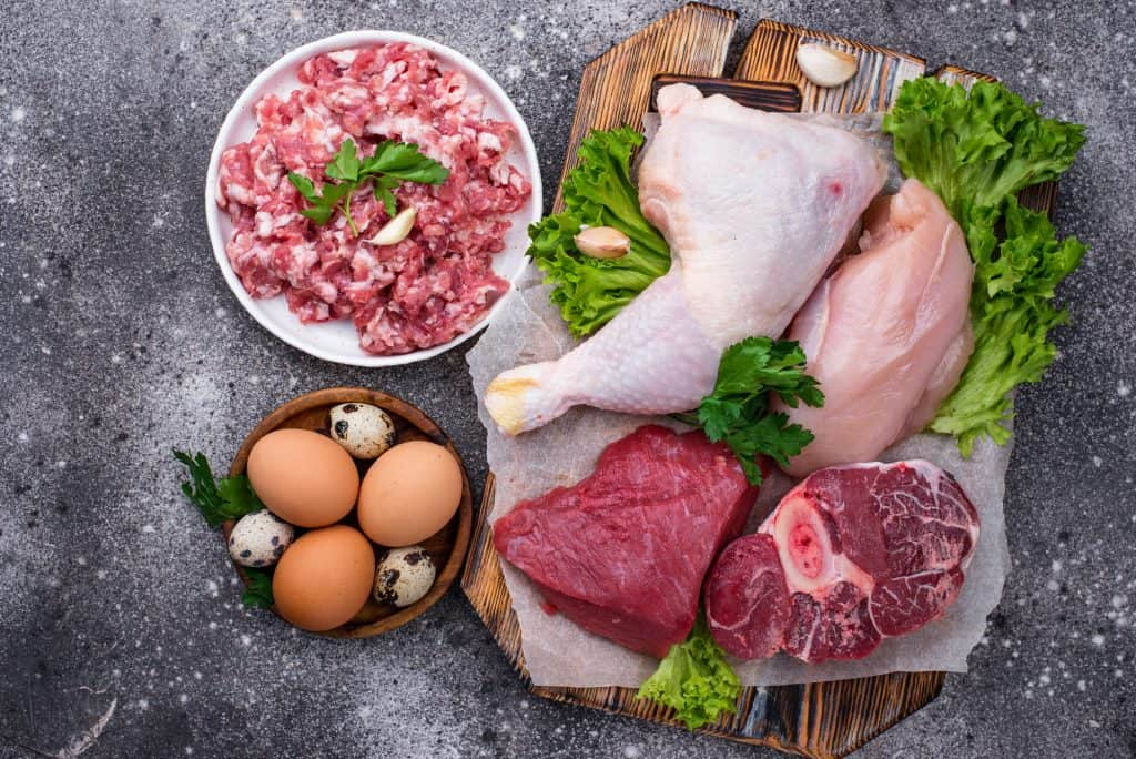 Various raw meat, sources of animal protein