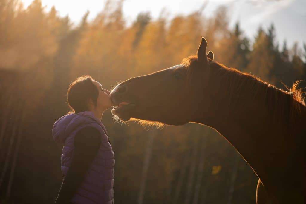 Autumn kiss.Young farmer woman hugging her horse - Concept about love between people and animals *NO